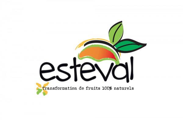 esteval-logo-os-galleryC53FFE16-D500-A810-4B64-FB35237E50E7.jpg